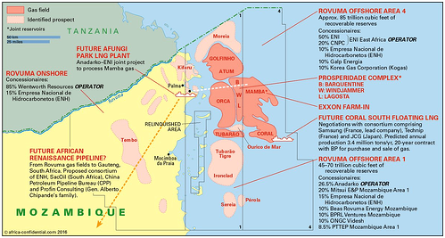 Mozambique current and offshore projects