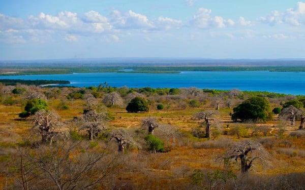 Pemba Bay in Cabo Delgado, Mozambique. Photo courtesy F Mira